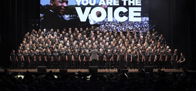 Harmony Project: You Are The Voice